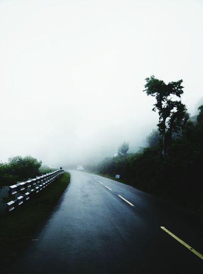 Kotagiri Mist