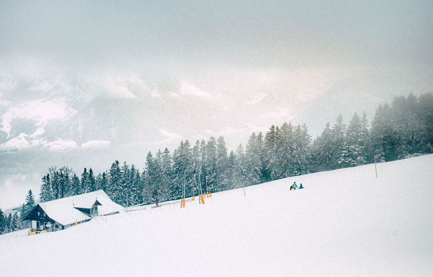 50mm VSCO Adventure Cold Temperature Day Leica Mountain Nature Outdoors Skiing Sky Snow Tree Vacations Weather White Color Winter Winter Sport Shades Of Winter EyeEmNewHere