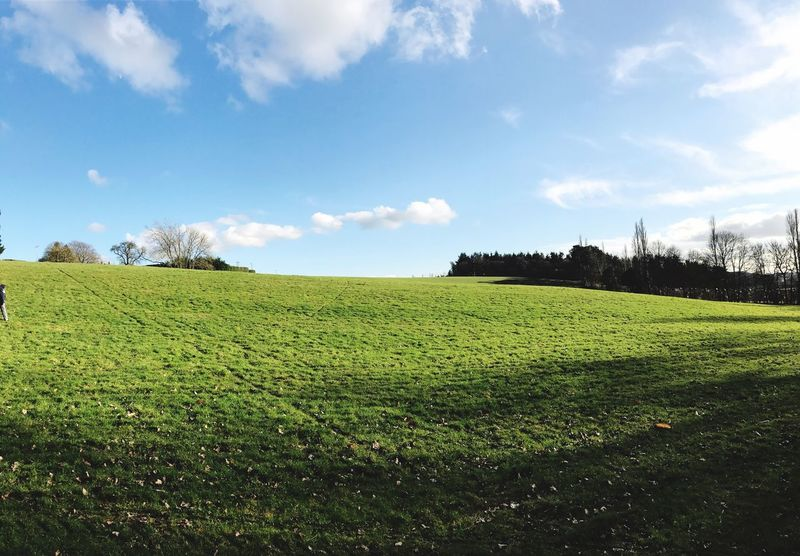 Landscape Sky Field Nature Rural Scene Growth Green Color Agriculture Scenics Tranquility Beauty In Nature Tranquil Scene Farm Grass No People Tree Day Outdoors Idyllic Freshness
