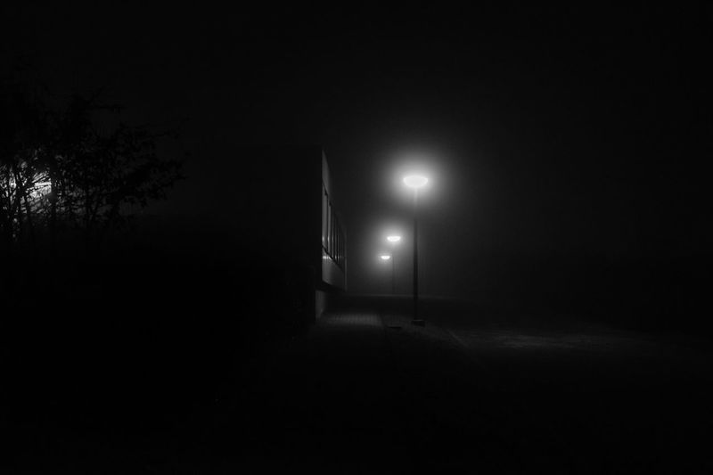 Black And White Friday Illuminated Lighting Equipment Night Dark No People Indoors  Tree Nature