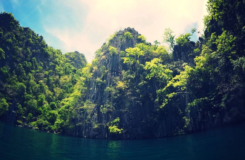 Coron, Philippines Gopro Gooro Amazing Coron Travel Philippines Tree Beauty In Nature Nature Tranquil Scene Scenics Tranquility Growth No People Waterfront Sky Outdoors Water Day