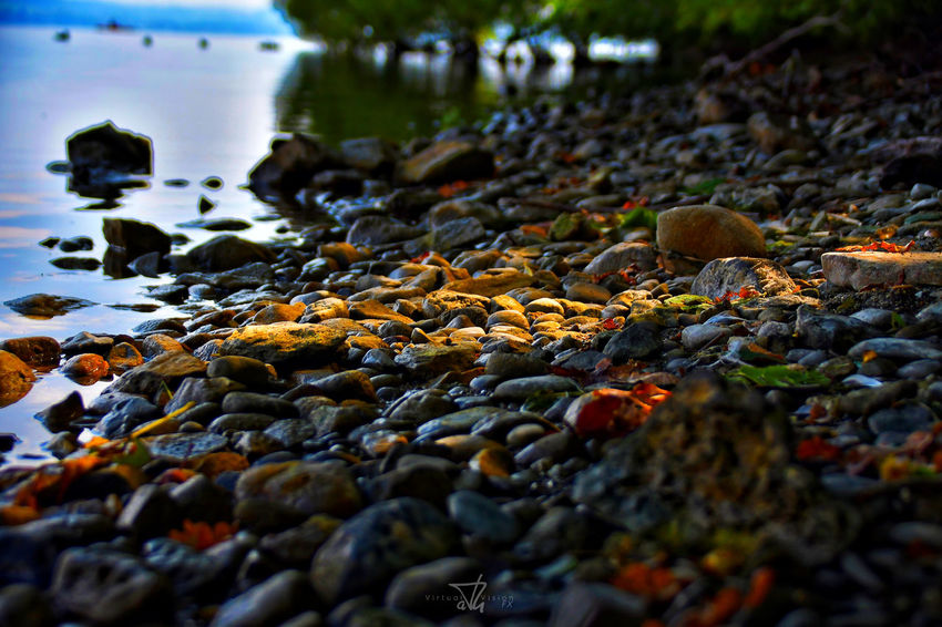 Sempachersee Stones & Water Beach Nature Water Pebble No People Outdoors Day Beauty In Nature