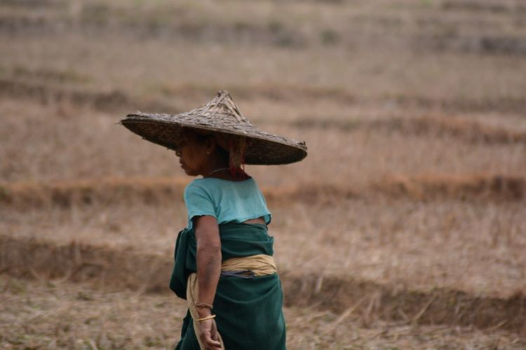 Rear view of woman wearing asian style conical hat on field