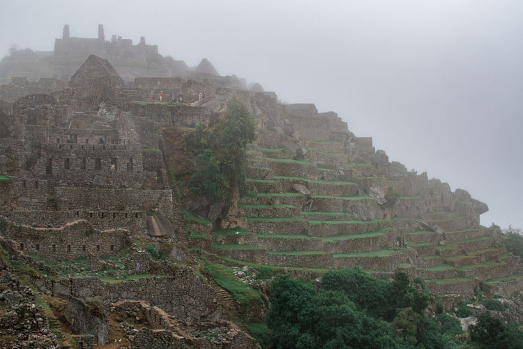 Architecture Fog History The Past Built Structure Ancient Ancient Civilization Travel Destinations Sky Old Ruin Nature Travel Tourism Building Exterior Mountain Tree Day Plant Building No People Outdoors Archaeology Machu Picchu Inca Inca Ruins