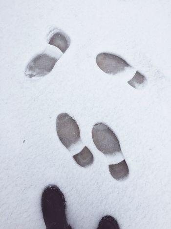 Winter Cold Winter ❄⛄ Breeze Snow Randomshot