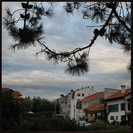 Ig_europe Ig_spain España Cantabria Comillas Estaes_cantabria Loves_cantabria Loves_spain Landscape Paisaje Испания Кантабрия Комильяс пейзаж