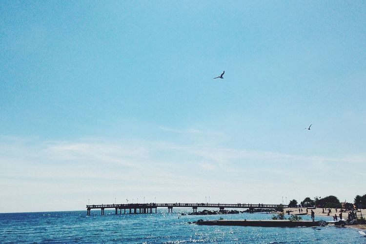 beautiful day to kayak across to the island! Vscocam IPhoneography 25 Days Of Summer Schattenspiel