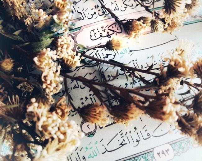 جمعة مباركة 🙏💙 جمعة_طيبه_عامرة_بذكر_الله جمعة_طيبة جمعة_مباركة_عليكم_جميعا 💟 اللهم_صل_على_محمد_وآل_محمد الاسلام الحمد لله ❤️ لا اله الا الله محمد رسول الله  😘❤❤ ISLAM♥ Alexandria, Egypt 😚