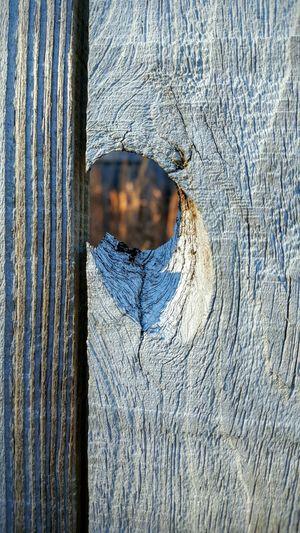 Wood Fence Wood Art Wood Fence Hole In Fence