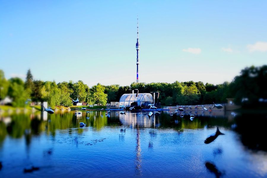 Ostankino Tower Moscow Summertime Relaxing Flying Fishes Water Reflection Sky No People Day Outdoors Nature Summer In The City Blue World