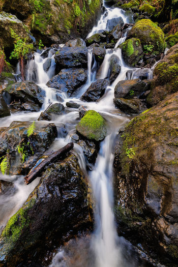 A nice waterfall in the forests of Trinidad, California. Creek Flowing Flowing Stream Flowing Water Landscape Photography Landscape_Collection Rock Rock Formation Rocky Landscape Landscape_photography Landscapes Nobody Nobody Around Outdoor Photography Outside Rock - Object Rocks Steep Water Water Surface Water_collection Waterfall Waterfall_collection Waterfalls