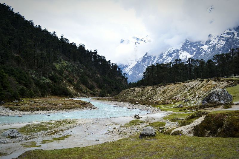 Yumthang Valley, North Sikkim Incredible India Beautiful View Sikkimdiaries Nature Yumthang Valley Sikkim Scenic Landscapes