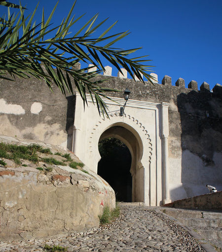 Entrance Tangier Ancient Civilization Arch Arched Entrance Architecture Book Location Building Exterior Built Structure Clear Sky Day Growth History Low Angle View Nature No People Ornate Outdoors Palm Tree Plant Rock - Object Sky Sunlight Travel Destinations Tree