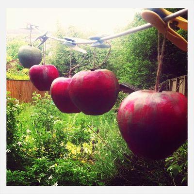 More apples for good teachers.
