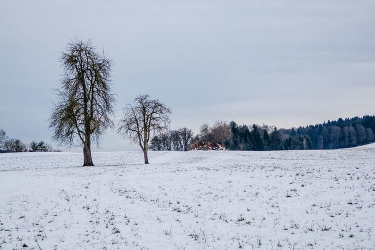 Scenic View Of Snow Covered Landscape Against Clear Sky At Knutwil