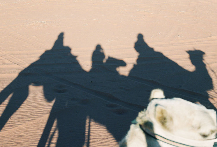 Shadow of people riding motorcycle on desert