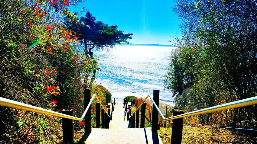 After a storm comes a calm ! Hello World Paradise Nature_collection Design Eyemphotography EyeEm Best Shots Love Santabarbara Tree Railing Nature Beauty In Nature Blue No People Day Sea Sunlight Sky