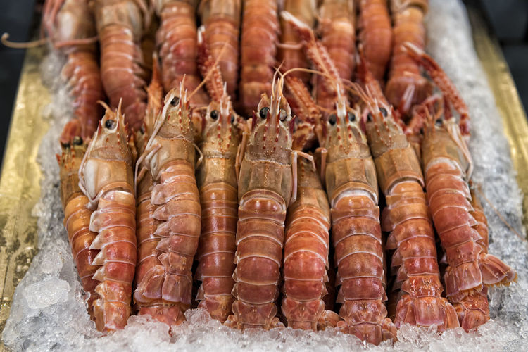Scampi on ice Scampi Seafood Market Food Freshness Close-up Crustacean Abundance Healthy Eating Ice Culinary Gastronomy Gourmet Fresh Animal Lunch Dinner Cooking Delicious Sea Animal Raw Seafood Crustacean Market Freshness Food And Drink