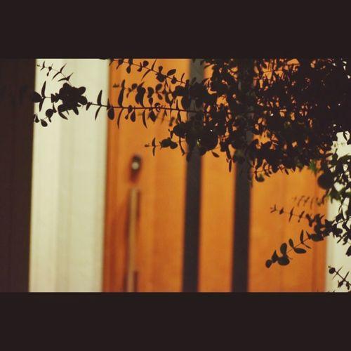 Door Doors Wellcome Home Wellcome HOMEGROUND