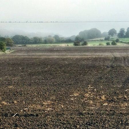 28 over. Fog in Dearne valley. Landscape #Nature #photography Foggy Morning Colours Of Autumn Naturehippys