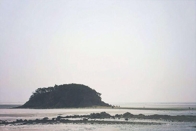섬 이름이... 유료관람 Beach Island