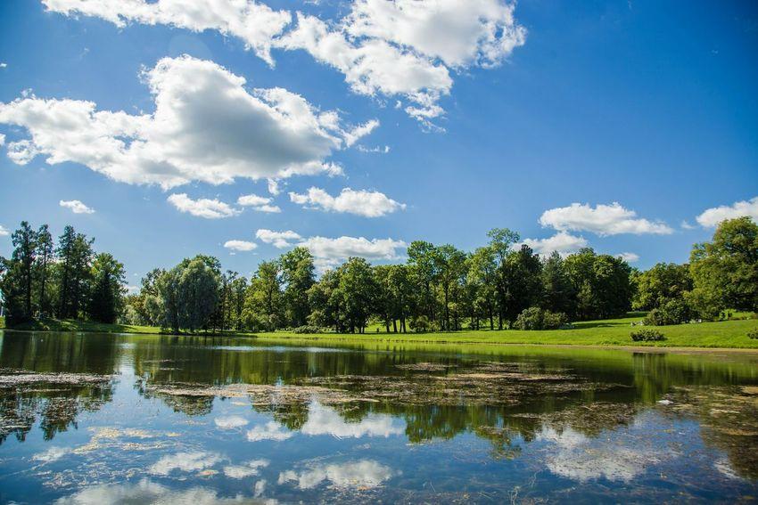 Alexx Strelkovv пейзаж Nature река Пушкин сад парк