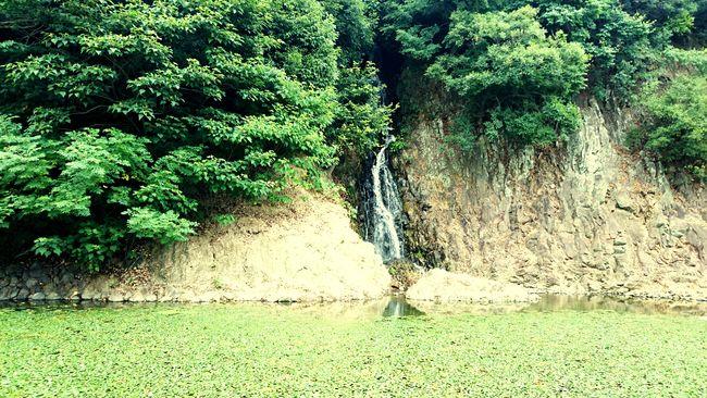 Takamatsu 栗林公園 高松 Ritsurin Garden Waterfall Green