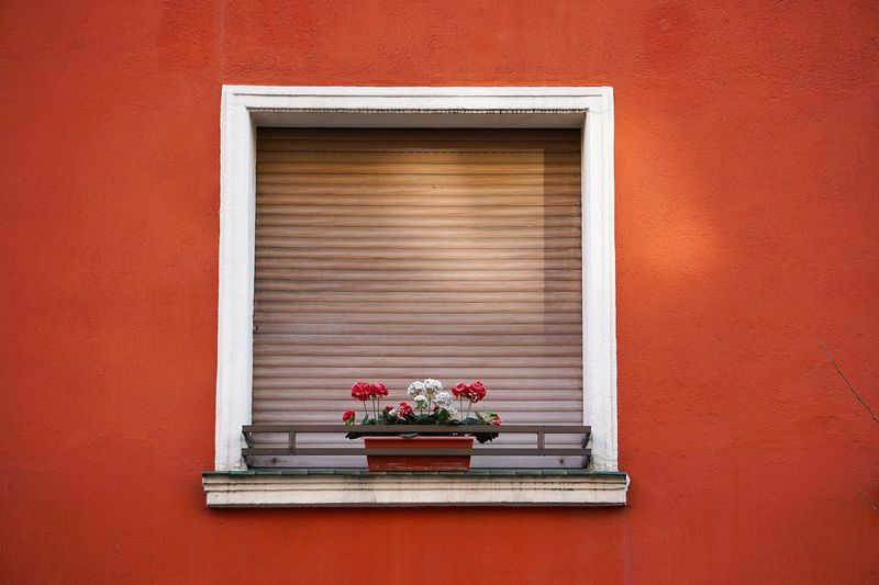 Window in the red house