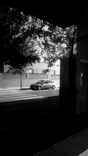 Reflection Architecture Black And White Blackandwhite Building Exterior Built Structure Car City Day Land Vehicle Mode Of Transportation Monochrome Motion Motor Vehicle No People on the move Outdoors Plant Road Street Transportation Tree Window Reflections