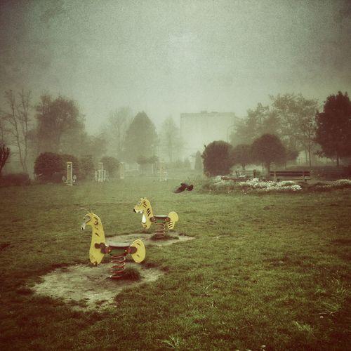Mobile Photography Jaworzno Fog Foggy