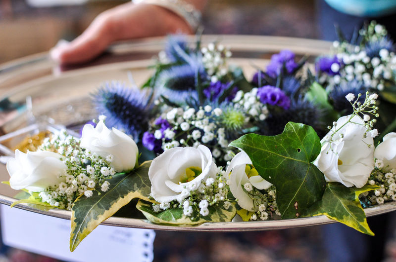 Beauty In Nature Bouquet Close-up Flower Flower Head Focus On Foreground Fragility Freshness Ivy Nature Petal Plate Purple Selective Focus White