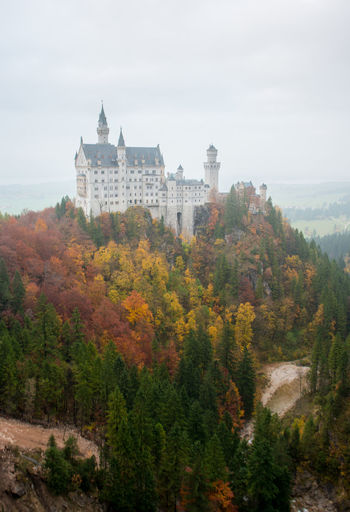 Neuschwanstein Castle with Autumn colors, Fussen, German Tree Plant Built Structure Architecture Nature Building Exterior Autumn Growth Sky No People Building History The Past Travel Destinations Day Fog Forest Change Tower Outdoors Spire