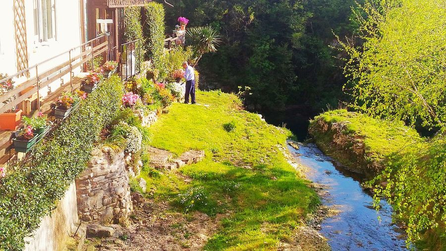 Garden Garden Photography Elderly Beatyful Nature Sunny Day Relaxing Taking Photos Hanging Out Check This Out Enjoying Life Love ♥ Comfortable History Dreams Rural Houses Rural Exploration Rural Scene Antique Rural