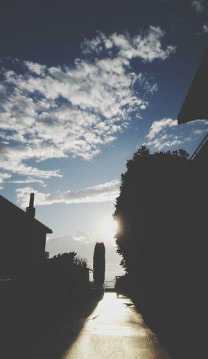 Sun Sunlight Sunshine Sun_collection Sunsilhouette Sunandclouds Sun And Clouds Sun And Sky Sunandtree Sunandsky Sky Sky And Clouds Skyporn Sky_collection Sky_collection Skylovers Sky Porn Silhouette Silhouettes Sky_ Collection Sky And Trees Sky And City Clouds And Sky Cloud - Sky Clouds