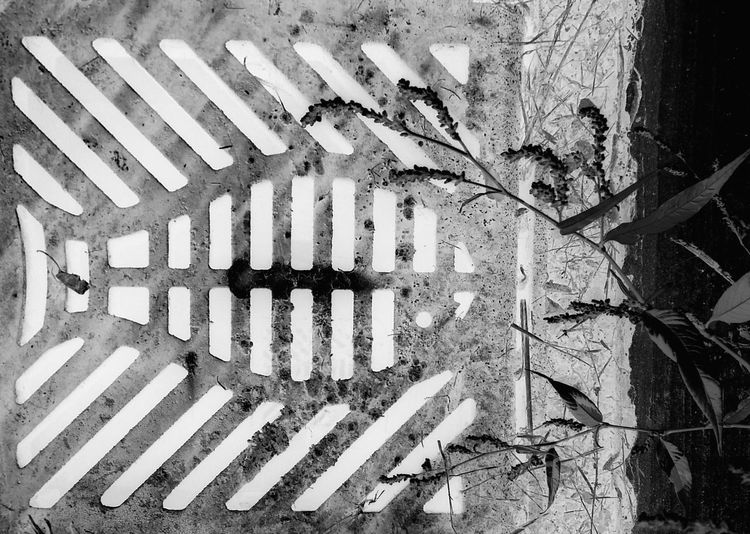 There will be a new Industrial Park in our area and this is a Bnw Negative Effect of a Sewer Grate that was installed on the new streets ... Urban Lines And Shapes for Bnw_friday_eyeemchallenge Floortrait From Above  Fish Pattern Wild Flowers Curbside Stories Industrial Design Infrastructure Attention To Detail Pattern, Texture, Shape And Form My Favorite Photo Up Close Street Photography The Street Photographer - 2016 EyeEm Awards Your Design Story Monochrome Photography Art Is Everywhere Cut And Paste Black And White Friday