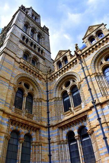 Architecture Building Exterior Built Structure Day Façade History London London Architecture LONDON❤ Low Angle View Natural History Natural History Museum Natural History Museum London No People Outdoors Stonework Travel Destinations Windows