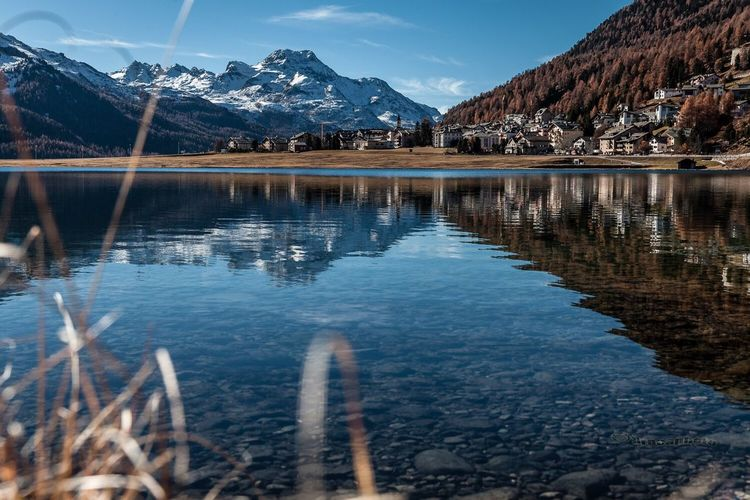 Silvaplana town Lake Reflection Scenics Engadin Nature