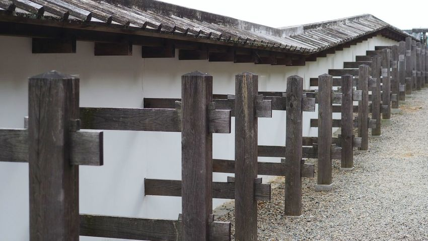 I saw a ninjya,before I took this photo.But I couldn't take his photo. 掛川城 Traditional Architecture Japanese Castle Mirrorless Japan Minimalism