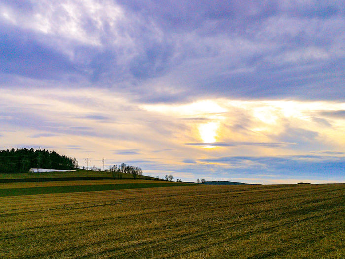 Landscape Landscape_Collection Spring Springtime Clouds Clouds And Sky Dreaming Dreamland Europe Saxony Rural Scene Cereal Plant Rice Paddy Agriculture Field Sunset Farm Sky Landscape Cloud - Sky Cultivated Land Agricultural Field