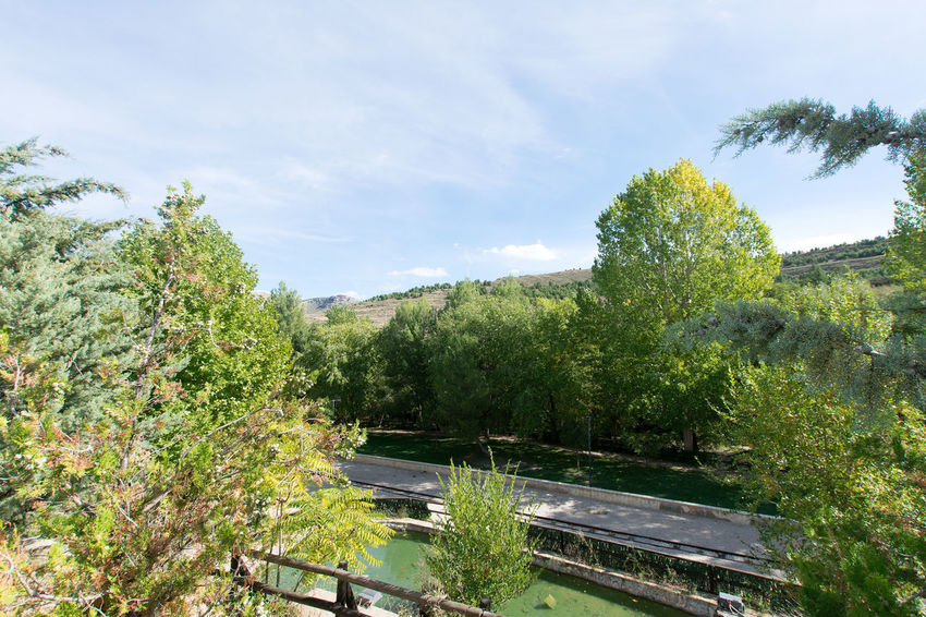 Utrillas Terual Moseo minerio y alrededores. Octubre 2018 2018 October Teruel Utrillas Beauty In Nature Cloud - Sky Day Eddl Environment Green Color Growth Land Landscape Nature No People Non-urban Scene Outdoors Plant Scenics - Nature Sky Sunlight Tranquil Scene Tranquility Transportation Tree