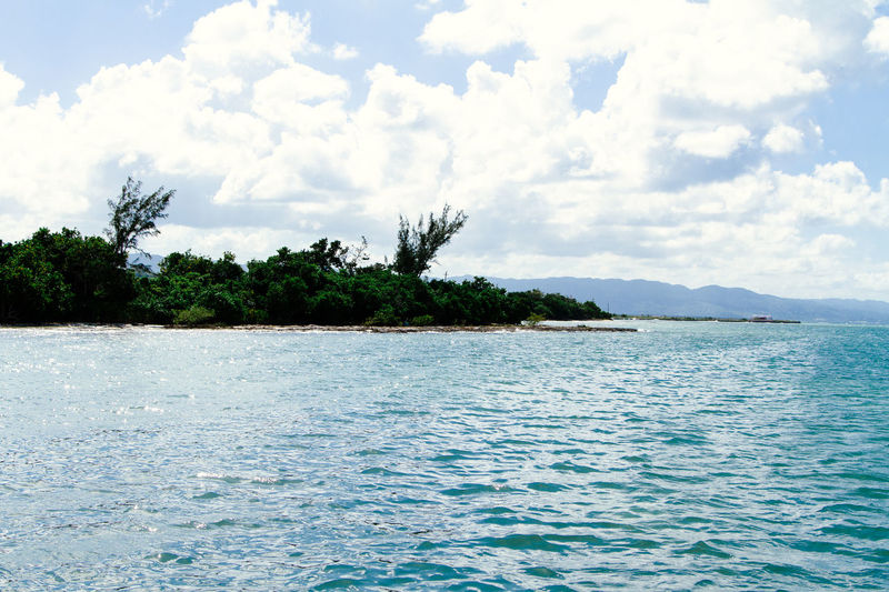 Montego Bay Jamaica Beauty In Nature Day Nature No People Scenics Sea Sky Tranquility Tree Water