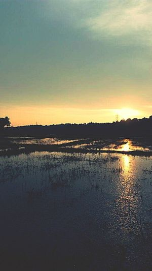 A Evening In Kerala Lost By Sunset Moments First Eyeem Photo