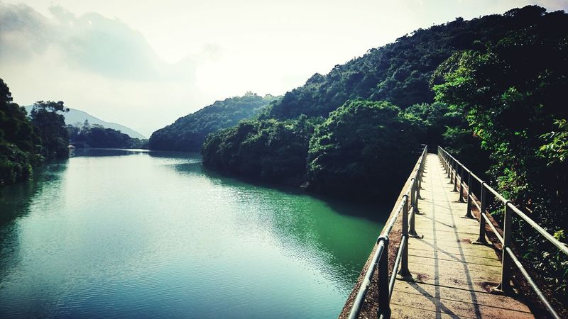 Landscape Nature Lake Water Tree Mountain Sunset Backgrounds No People Outdoors Beauty In Nature Day Hong Kong Tai Tam Reservoir Tai Tam Country Park Reservoir Harmony With Nature Harmony Of The Seas Nature Of Beauty Beauty In Nature Tranquility Future Ahead Direction