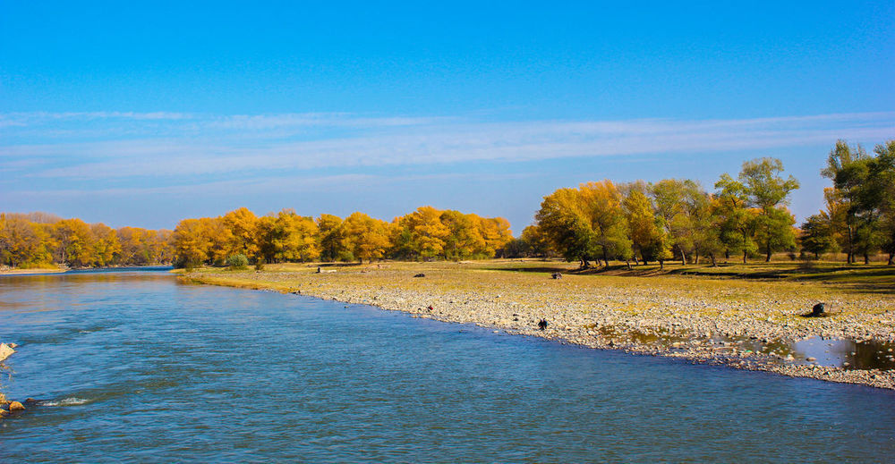 Autumn Beauty In Nature Day Lake Landscape Nature No People Outdoors Scenics Sky Tranquil Scene Tranquility Tree Water