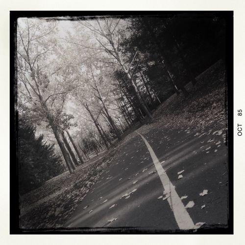 Neighborhood pathway. Project 365 Photo Of The Day Hipstamatic Iphone 5 Autumn