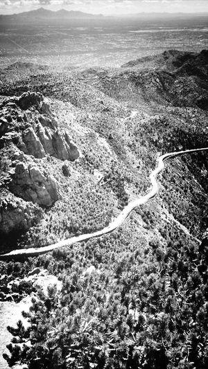 Lemon Tuscon Cityscapes Arizona