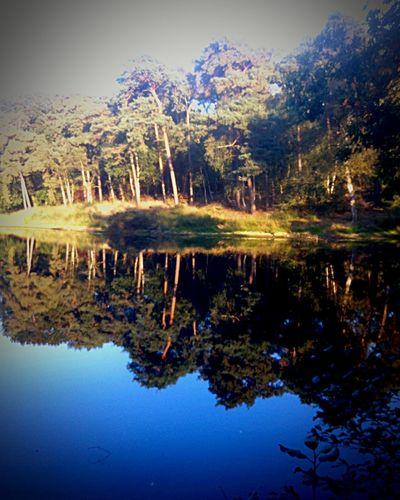 Water Reflections OpenEdit EyeEm Best Shots EyeEm Nature Lover Nature Taking Photos