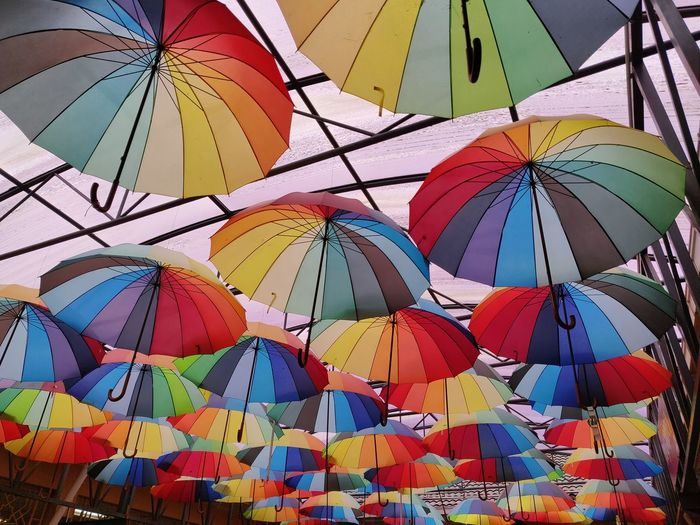 Thousand Umbrella Multi Colored Full Frame Close-up Colorful Fanned Out Stained Glass Peacock Feather Peacock Animal Crest ArtWork Art And Craft Colored Pencil Architecture And Art Light Painting Origami Rose Window Dissolving Pipe Organ Mosaic Art Sculpture Pinwheel Toy Craft EyeEmNewHere