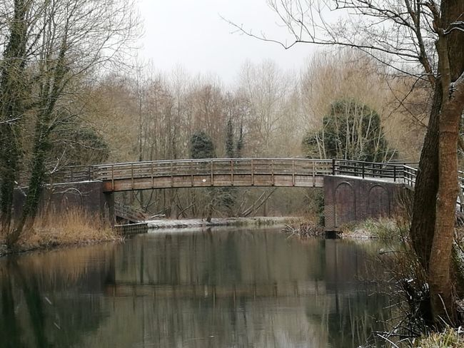 bridge over calm waters Canals And Waterways Kennet And Avon Canal Still Waters Still Water Towpath Tree Reflection Lake Water Nature No People Bare Tree Outdoors Beauty In Nature Day Sky