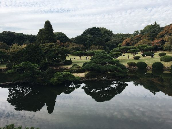 Tokyo Japan 日本 Street Photography IPhoneography Water Plant Reflection Sky Lake Tree Cloud - Sky Nature Beauty In Nature Waterfront Tranquility No People Growth Day Scenics - Nature Outdoors Architecture Green Color Formal Garden